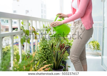 Charming Young Asian Woman Watering Plant In Container On Balcony Garden #503237617