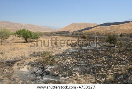Charred landscape in the Tehachapis. - stock photo
