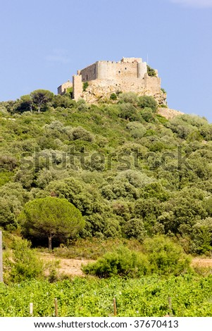 Chateau-Saint-Martin with vineyard, Languedoc-Roussillon, France