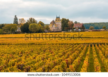 Chateau with vineyards in the autumn season, Burgundy, France #1049513006