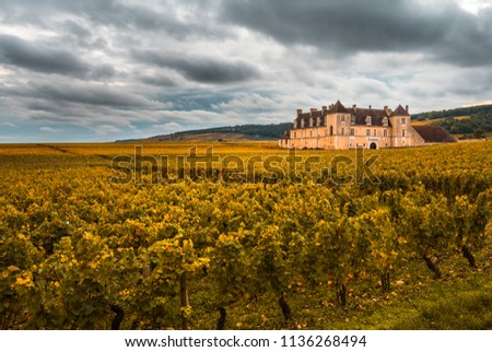 Chateau with vineyards in the autumn season, Burgundy, France #1136268494
