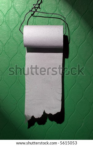 Cheap toilet paper roll on the green wall. You can write your message on it.