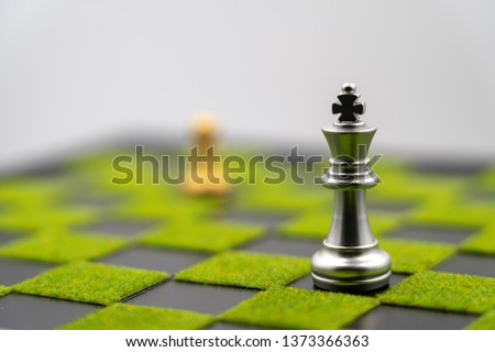 checkerboard background of green grass with king. Have copy space. one king like strong business. Strong leader