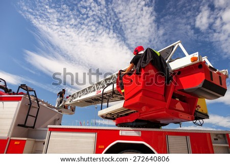 Checks and maintains the ladders on the fire truck.