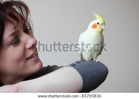 Cheeky Cockatiel parrot and woman - stock photo