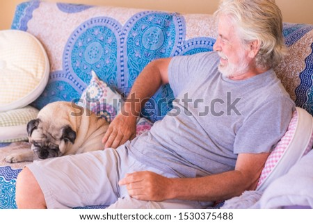 Cheerful senior man white hair and beard playing with his clear pug dog. Together in friendship and love. Sitting on a sofa. One people and one animal