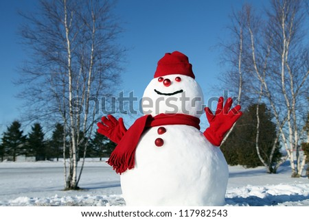 Cheerful snowman all dressed up for the cold weather