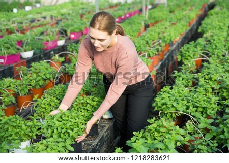Cheerful woman controlling quality of Mint plants in greenhouse farm #1218283621