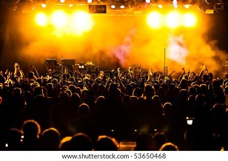 Cheering crowd at concert