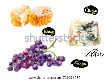 Cheese blue, honey, grape watercolor hand drawn the illustration isolated on white background. Kitchen ingredients set.