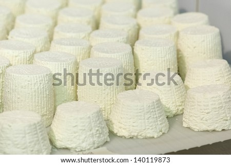 Cheese goat factory