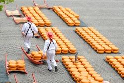 Cheese market in Alkmaar,Holland