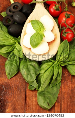 cheese mozzarella with vegetables in wooden spoon on wooden background close-up