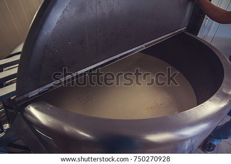 Cheese production at dairy farm, first stage - milk processing #750270928