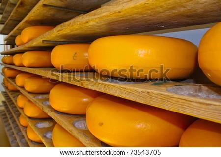Cheese rack in refining in Gouda