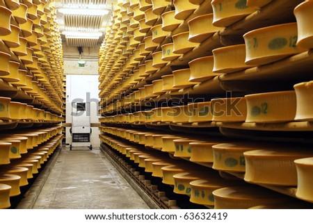 cheese stock