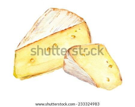 Cheese. Watercolor picture