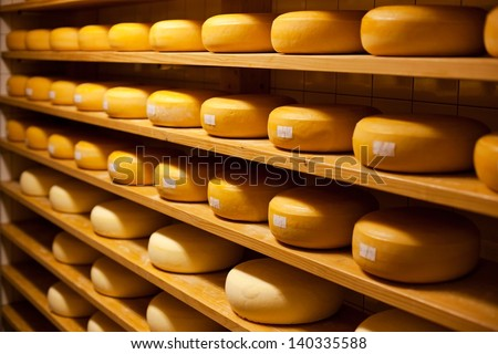 Cheese with raclette in ripening cellar in a close up image