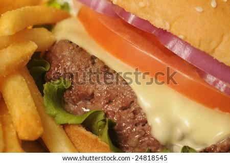 Cheeseburger & French Fries Close-Up