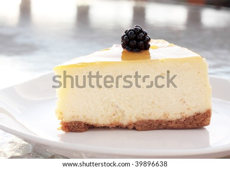 Cheesecake with a single blackberry shimmering in the afternoon sun