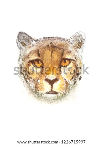 cheetah portrait avatar head illustration #1226715997