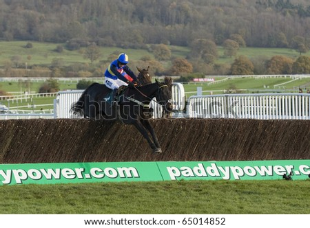 CHELTENHAM, GLOUCS; NOV 13: Dougie Costello Wayward Prince takes the fence at the second race at Cheltenham Racecourse, UK, November 13, 2010 in Cheltenham, Gloucestershire