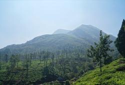 Chembra peak in wayanad, Kerala. Chembra Peak is one of the highest peak in the Western Ghats and the highest peak in Wayanad hills, at 2,100 m above sea level.