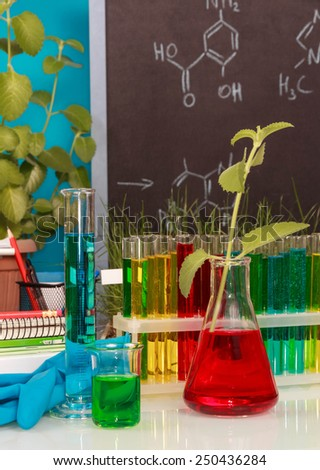 Chemical flasks with experimental liquid on blackboard background