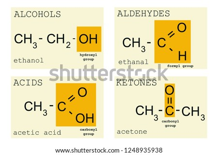 Chemistry basics with functional groups of alcohols, acids, aldehydes and ketones