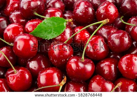Cherries. Cherry background. Fruit background. Wet cherry with leaves and drops. Сток-фото ©