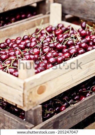 Cherries in boxes at street market