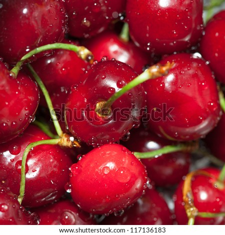 Cherries splashed by water