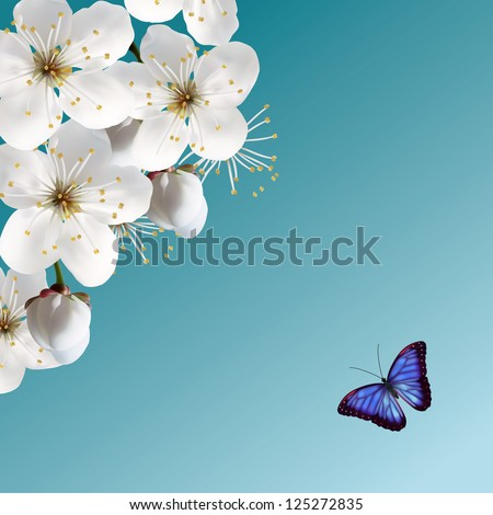 Cherry Blossom And Blue Butterfly. Raster Version.