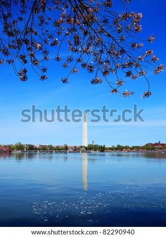 Cherry blossom and Washington monument over lake with ducks, Washington DC.