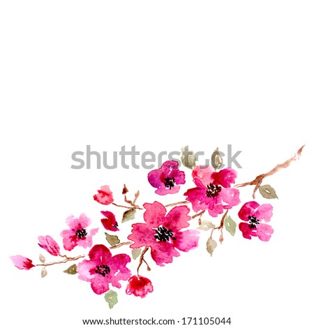 Cherry blossom. Sakura flowers. Floral background. Branch with pink flowers. Birthday card.