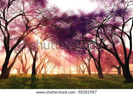 Cherry Blossoms Japanese Garden 3D render stock photo