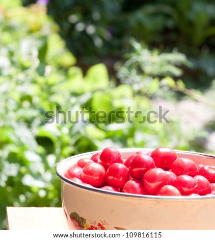 Cherry in the dish on table in garden
