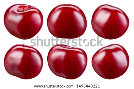 Cherry isolate. Cherries on white. Sour cherry. Set. With clipping path.