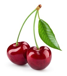 Cherry isolated. Cherry on white. Cherries. With clipping path.