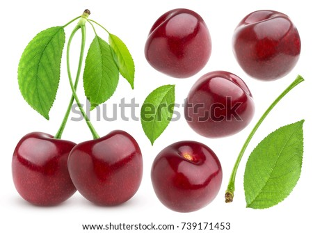 Cherry isolated on white background. Cherries collection