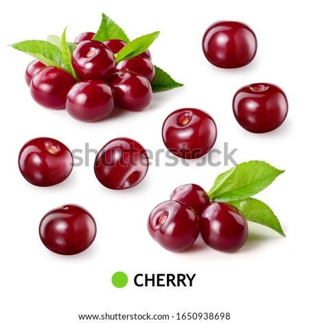 Cherry isolated. Sour cherry. Cherries with leaves on white background. Sour cherries on white. Cherry set.
