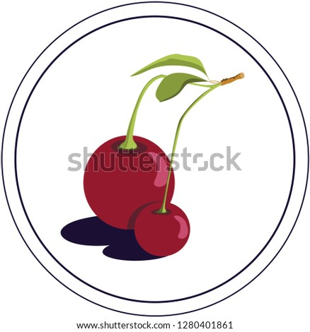 cherry on a branch