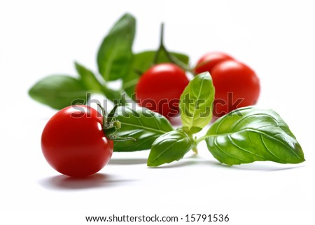 cherry tomato with basil herb on white background with shadow, shallow DOF