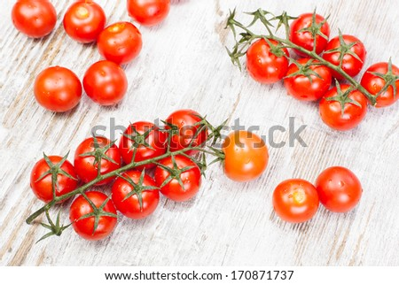 Cherry tomatoes. Branches of cherry tomatoes