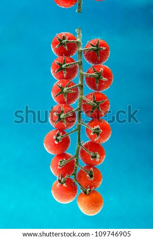 cherry tomatoes in the water on blue background