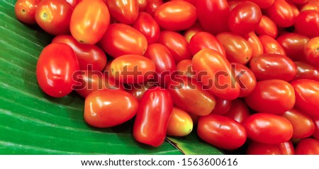 Cherry tomatoes, Sida Thai Tomato, in the market.Fresh tomato background. Isolated. Close up red tomatoes.Cherry tomatoes, Sida Thai Tomato, in the market. #1563600616