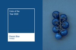 Cherry tomatoes toned in trendy Classic Blue color of the Year 2020. Vegetables minimalizm art concept. Main color trend 2020 classic blue.