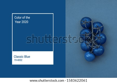 Cherry tomatoes toned in trendy Classic Blue color of the Year 2020. Vegetables minimalizm art concept. Main color trend 2020 classic blue. Stok fotoğraf ©