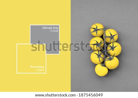 Cherry tomatoes toned in trendy Illuminating and Ultimate Gray color of the Year 2021. Vegetables minimalizm art concept. Main color trend 2021 Stok fotoğraf ©