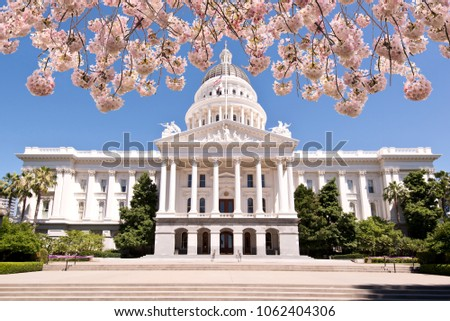 Cherry Tree Blossoms over the California State Capitol Building